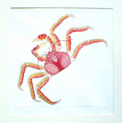 King Crab in 'Crustaceans'