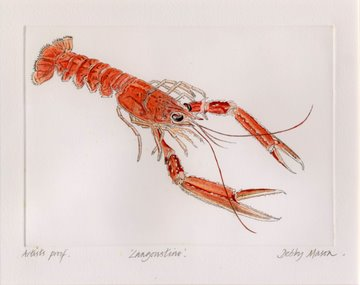 Langoustine Large in 'Crustaceans'