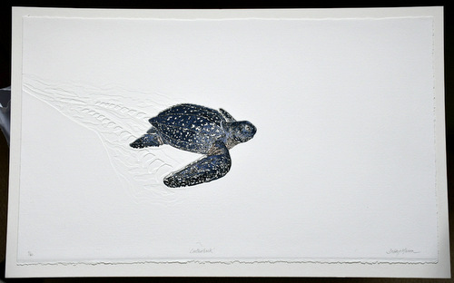 Leatherback Turtle in 'Reptiles'