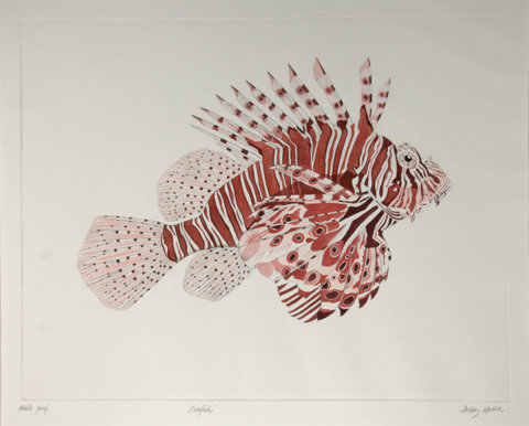 Lionfish in 'Coral Seas'
