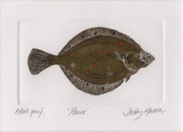 Plaice in 'Salt Water Fish (UK)'