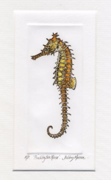 Prickly Sea Horse