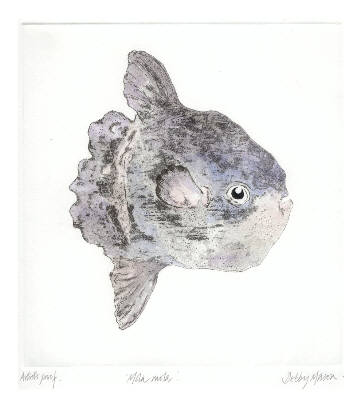 Mola Mola Sunfish (Medium) in 'Salt Water Fish (UK)'