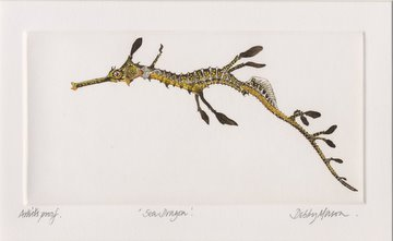 Sea Dragon (Small Weedy) in 'Sea Dragons'
