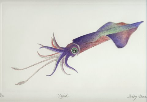Squid II in 'Cephalopods'