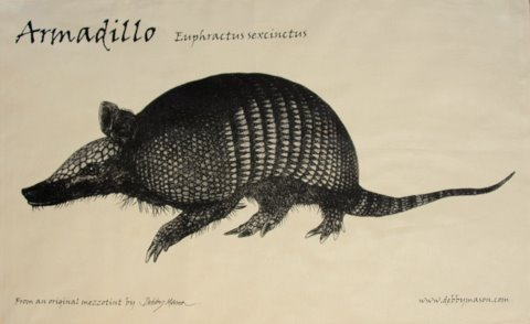 Armadillo Tea Towel in 'My Designs'