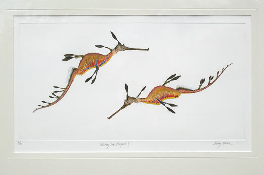 Weedy Sea Dragons II